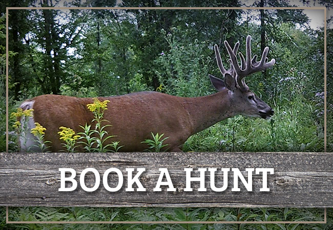 Book A Hunt With Clearwater County Outfitters