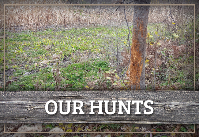 Our Hunts at Clearwater County Outfitters